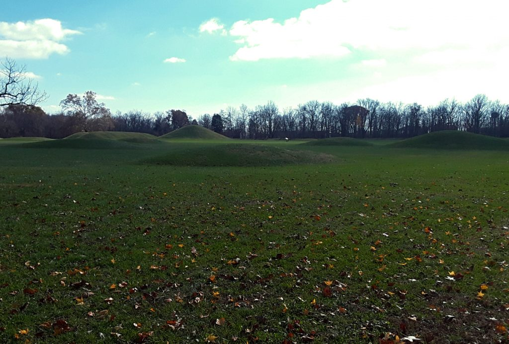 Hopewell Mound City
