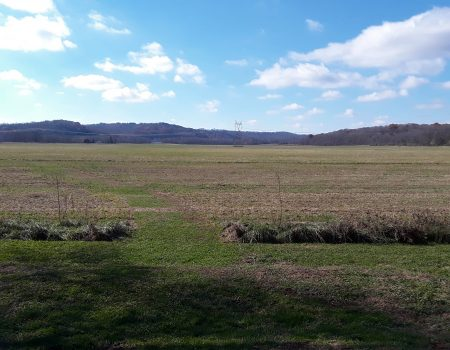 Among the Mounds, Part 2: Hopewell Mound Group