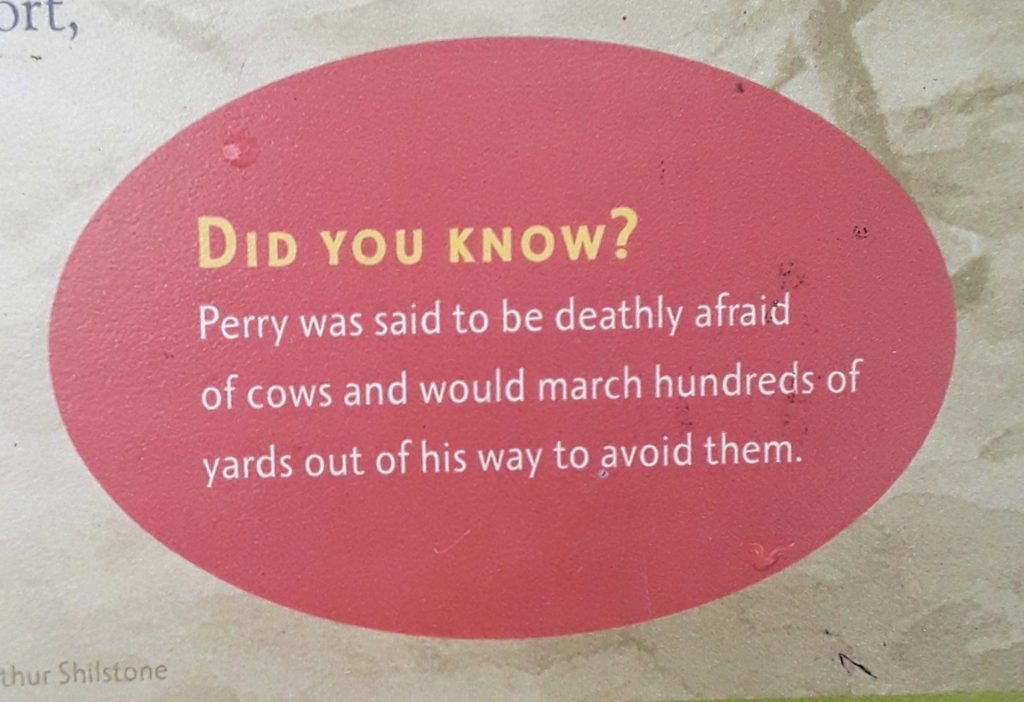 Commodore Perry fun fact